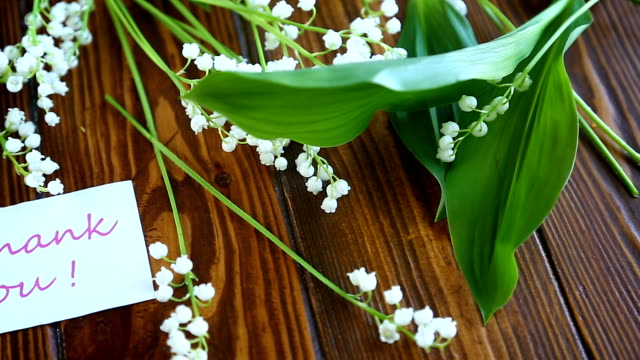 Beautiful spring flowers lily of the valley video