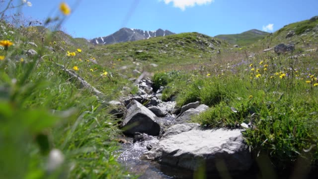 beautiful stream in the mountains, close up - france risoul alps - hautes alpes stock videos & royalty-free footage