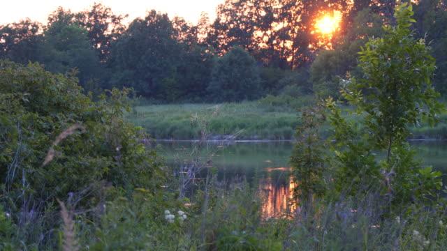 stockvideo's en b-roll-footage met mooie zomerse zonsondergang op meertje - rivieroever