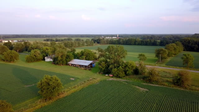 Beautiful Summertime Sunset Aerial footage of the Michigan Farm Land Beautiful Summertime Sunset Aerial footage of the Michigan Farm Land with green pastures and natural forestation pasture stock videos & royalty-free footage