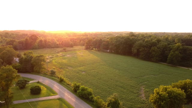 Video Beautiful Summertime Sunset Aerial footage of the Michigan Farm Land