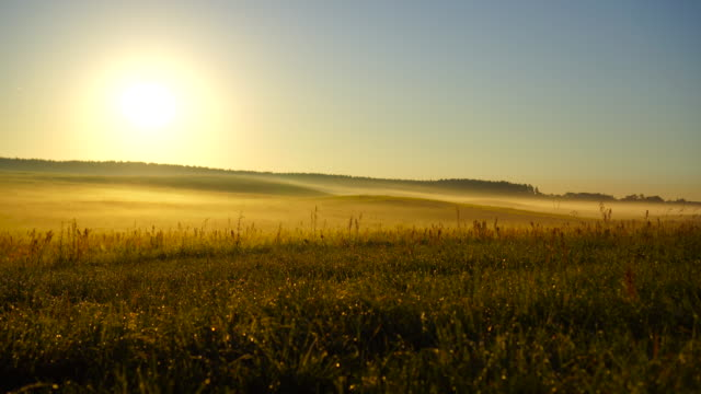 Beautiful sunrise in a foggy autumn day video