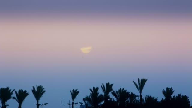 a beautiful sunrise over palm trees in an exotic country - badawczy statek kosmiczny filmów i materiałów b-roll