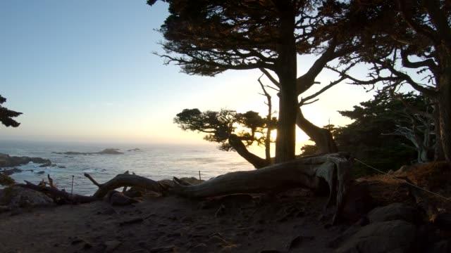 vídeos de stock e filmes b-roll de beautiful sunset at point lobos state natural reserve, california, usa - estrada 001