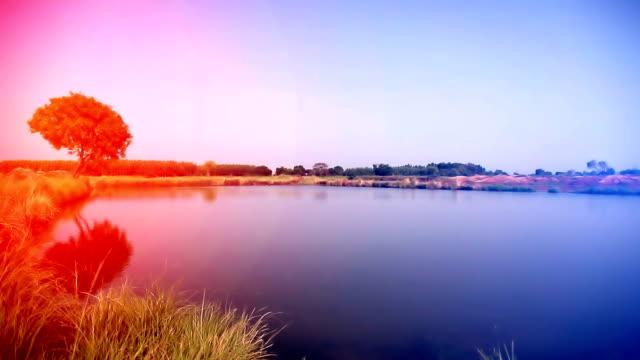 Beautiful sunset near lake video