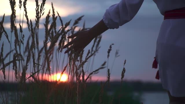 beautiful sunset on the river bank. - славянская культура стоковые видео и кадры b-roll