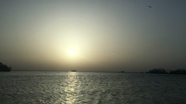 Beautiful sunset over egypt