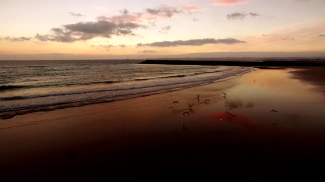 Beautiful sunset over the ocean aerial view video