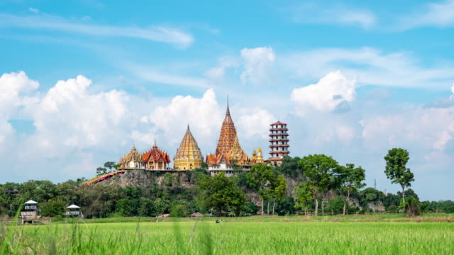 Beautiful Temple and Golden Buddha on The Top of Mountain Among Uncultivated Rice Paddy, Time Lapse Video