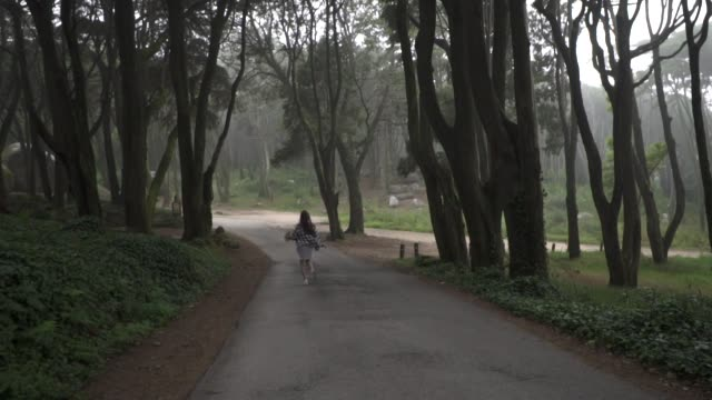 beautiful traveler girl in dress and straw hat walking on asphalt road in magic fabulous forest with high trees and large stones. sintra. portugal. - сбежавший из дома стоковые видео и кадры b-roll