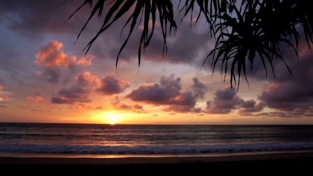 Beautiful tropical beach scene at sunrise, Hawaii video