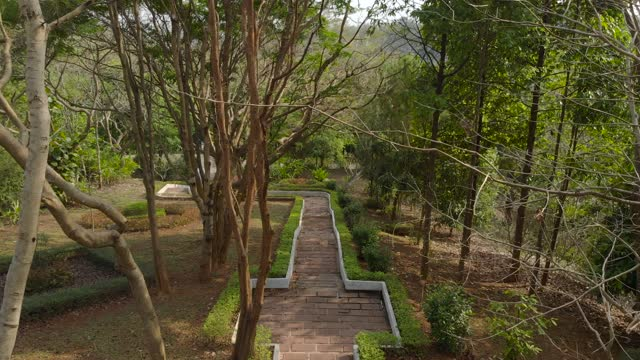 Beautiful tropical forest park pavement or walk way