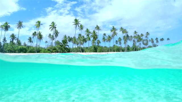 4K SLOW MOTION HALF UNDERWATER CLOSE UP: Beautiful tropical island with tall palm trees on white sandy exotic beach and amazing crystal clear blue ocean lagoon video