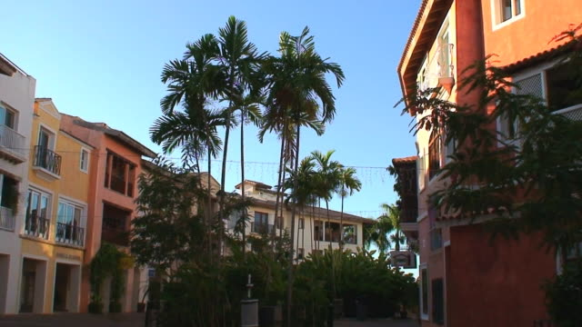 Beautiful Tropical Neighborhood HD video