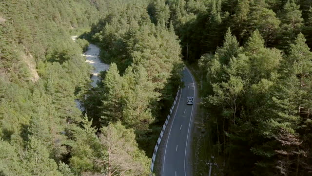 Beautiful view from above car moving along road among green forest to mountains video