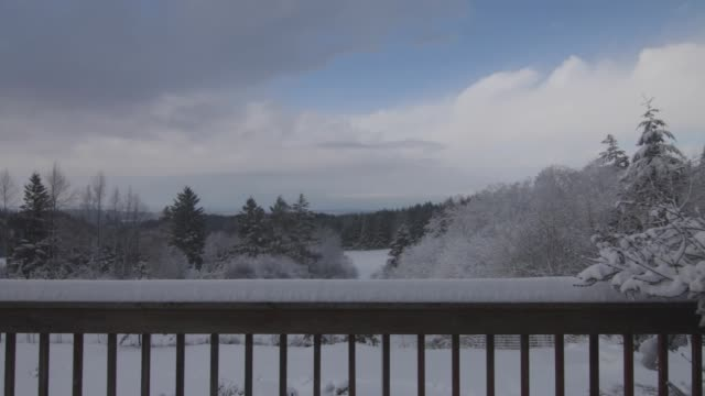 裏のベランダから雪に覆われた森林の眺めの美しい景色 - デッキ点の映像素材/bロール