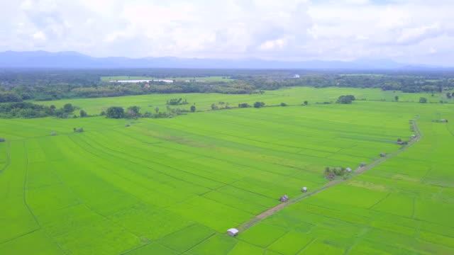 山の農地の水田棚田の美しい眺め - 水田点の映像素材/bロール