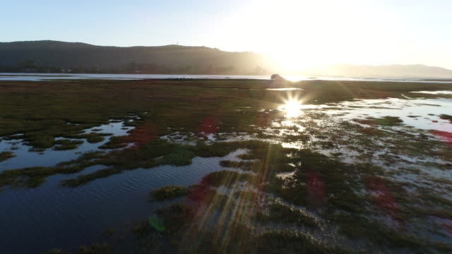 Beautiful view of the Knysna wetland at sunset Aerial view of Knysna wetlands at sunset, drone point of view western cape province stock videos & royalty-free footage
