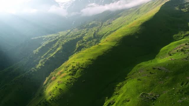 beautiful view of the mountains from the drone. - zielony kolor filmów i materiałów b-roll