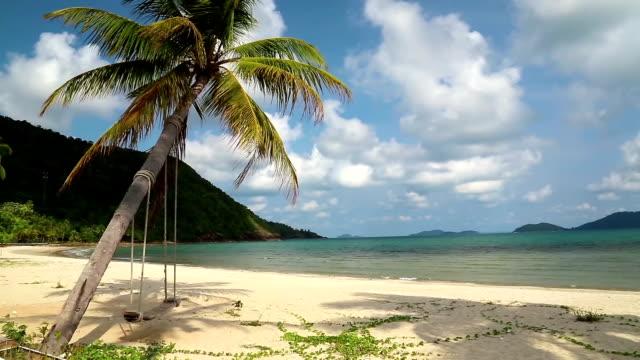 vídeos y material grabado en eventos de stock de hermosa vista del mar, playa y palm árbol con swing - río yangtsé
