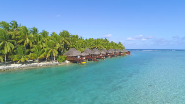 AERIAL: Beautiful view of wooden villas on the exotic shore in Cook Islands.