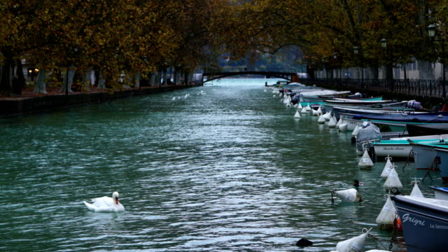 Beautiful view on french Alps at lake Annecy - video