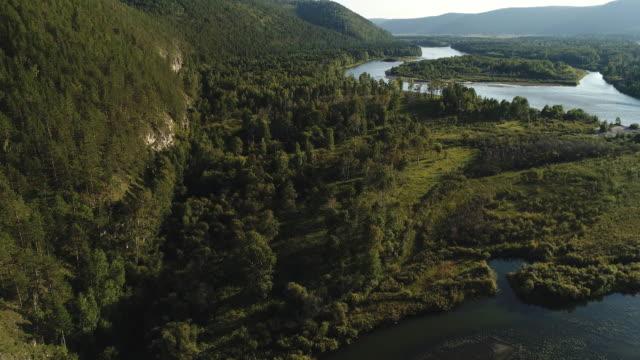 schöne aussicht auf grüne wälder und gewundenen fluss bei sonnigem wetter - sonnenbarsch stock-videos und b-roll-filmmaterial