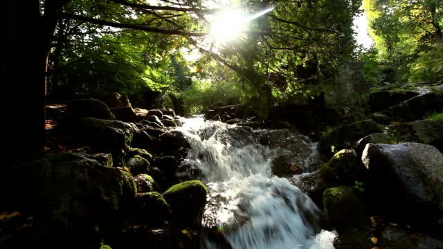 Beautiful Waterfall + Audio video