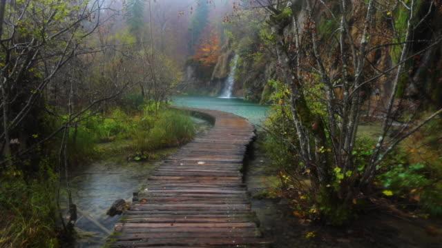 vackra vattenfall, sjöar och hösten skogen i nationalparken plitvice, kroatien - flod vatten brygga bildbanksvideor och videomaterial från bakom kulisserna