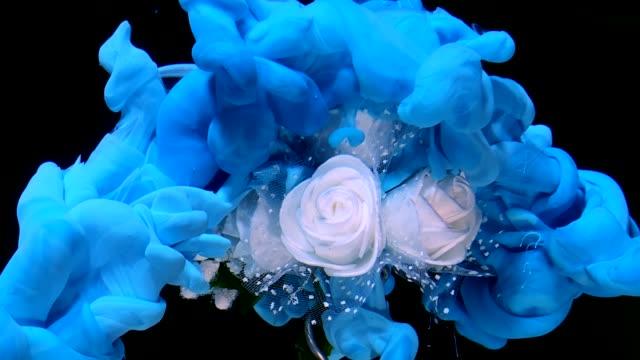 vackra bröllop bukett vita rosor och blått akvarell bläck i vatten på en svart bakgrund. - white roses bildbanksvideor och videomaterial från bakom kulisserna