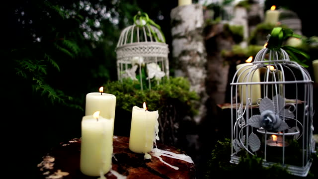 beautiful wedding decor with candles, birch logs video