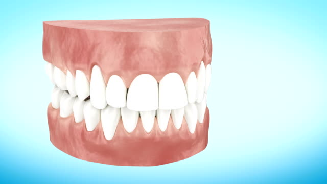 beautiful white clean teeth turning close up 3d animation. alpha channel. - denti video stock e b–roll