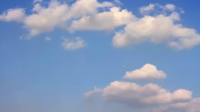 美しい白い雲と青い空 - ふわふわ点の映像素材/bロール