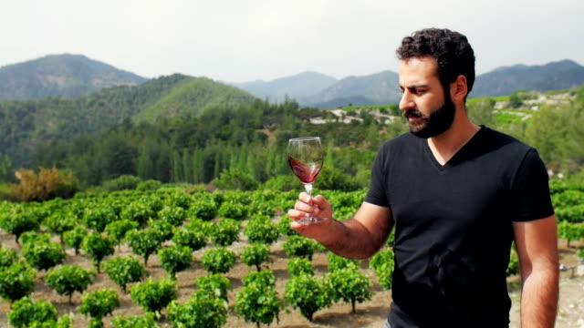 Beautiful winemaker tasting wine on the background of his vineyard plantation video