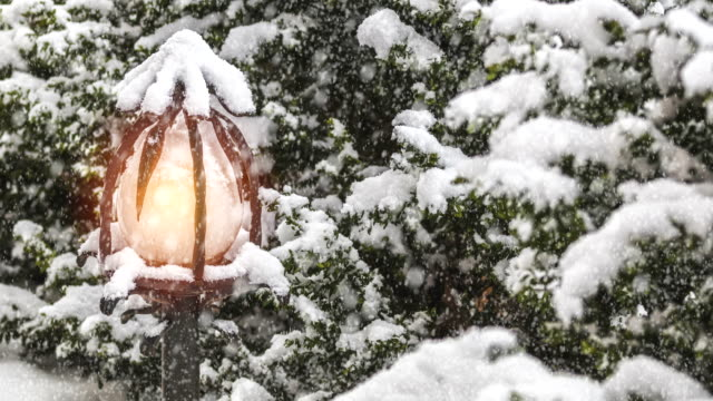 Beautiful winter greeting card with with trees cover snow, street light and slow motion snowfall. video
