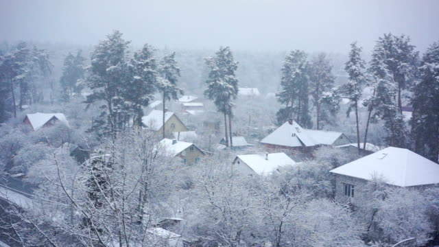 Beautiful winter landscape, snow falling on silent country houses and pine trees video