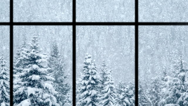 Beautiful winter scene of snow falling over pines, loopable video