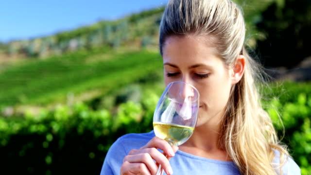 beautiful woman examining wine in vineyard - annusare video stock e b–roll