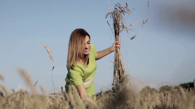 beautiful woman in a wheat field. - orecchio umano video stock e b–roll