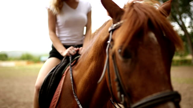 Beautiful woman riding a horse Beautiful girl riding a horse  in countryside ona nice summer day saddle stock videos & royalty-free footage