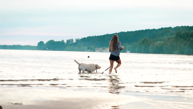 Beautiful woman with her dog playing on the bank of the river video