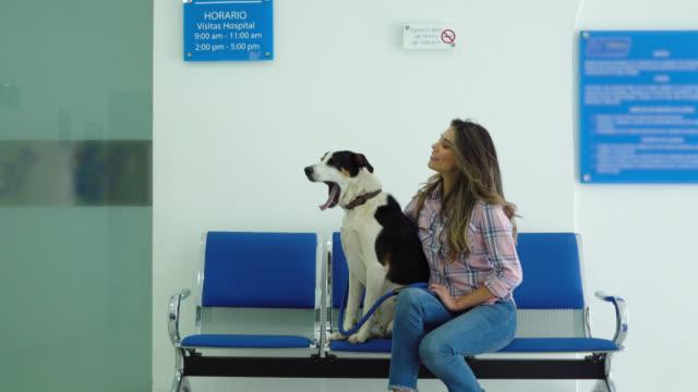 skön kvinnan med henne blandad skapa hund på det veterinary och då kärleksfull vet smekande hund på väntrummet - veterinär, undersökning bildbanksvideor och videomaterial från bakom kulisserna