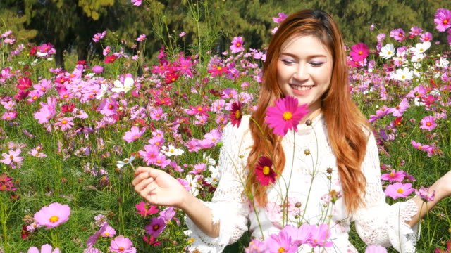 beautiful woman with the cosmos flower field video