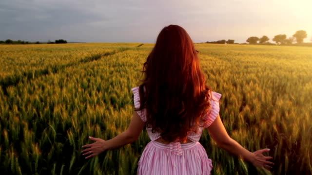 Beautiful Young Female Model Vintage Dress Walking Wheat Field video