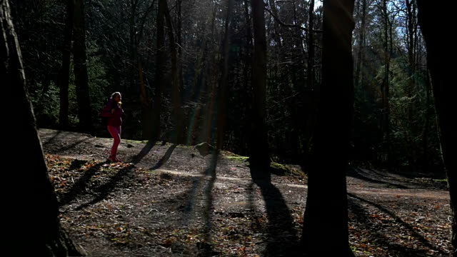 Beautiful young girl walks in forest. Background dark trees in sunrays. Pink clothes, spring forest, Slow motion video