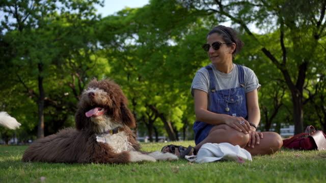 schöne junge frau genießt entspannung in einem park mit einem hund - hundesitter stock-videos und b-roll-filmmaterial