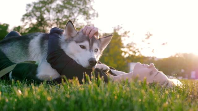 公園で屋外面白いハスキー犬と遊ぶ美しい若い女性 - ネコ科点の映像素材/bロール