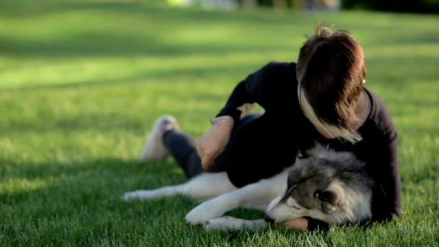 Beautiful young woman playing with funny husky dog outdoors in park on green grass video