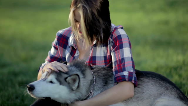 beautiful young woman playing with funny husky dog outdoors - malamute video stock e b–roll