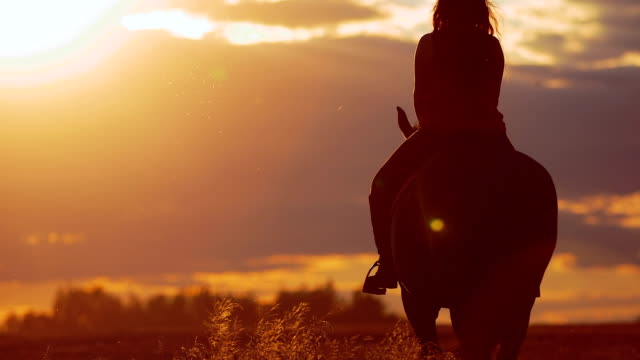 Beautiful young woman riding horse in the sunset. Footage of young woman riding horse on grassy field. Full length of female enjoying her horseback ride at ranch. horseback riding stock videos & royalty-free footage